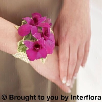 Rich Purple Orchid Pearl Wrist Corsage: Booker Flowers and Gifts