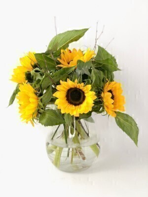 Sunshine Sazzle Sunflowers: Booker Flowers and Gifts